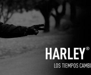 Los concesionarios Harley-Davidson vuelven a abrir sus puertas